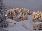 あまやちの冬